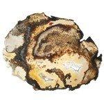 Agate Slice - Natural  ~17cm