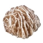 Desert Rose Specimen - Medium