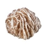 Desert Rose Specimen - Small