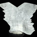 Fishtail Gypsum Healing Crystal ~65mm