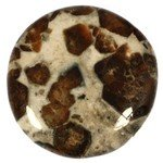 Garnet in Limestone Polished Stone  ~ 40mm