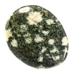 Preseli Stonehenge Bluestone Polished Stone ~52mm