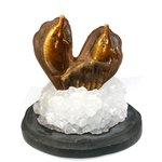 Tiger Eye Carved Dolphin On Base ~100mm x 95mm