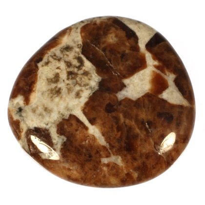 Garnet in Limestone Polished Stone ~ 38mm