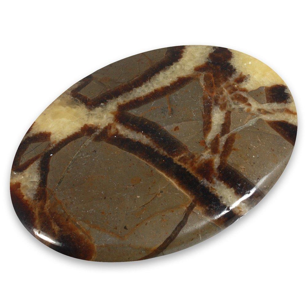 Septarian Palm Stone