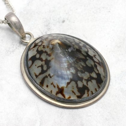Shell & Silver Pendant - Light Pattern (30mm)