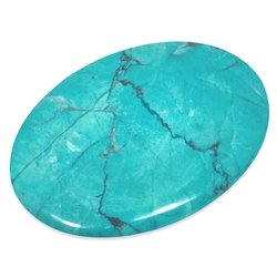Turquoise Howlite Palm Stone